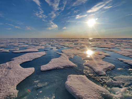 Sea ice and the polar sun