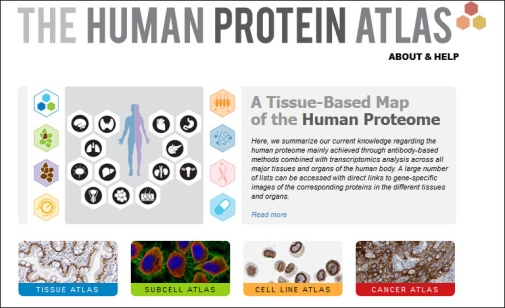 Screen of The Human Protein Atlas website, http://www.proteinatlas.org