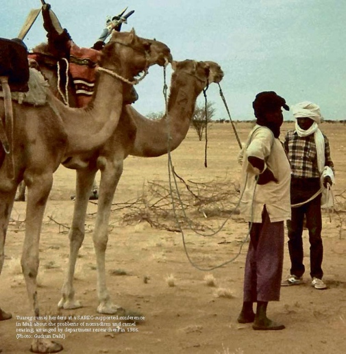 Tuareg camel herders at a SAREC-supported conference in Mali about the problems of nomadism and camel rearing, arranged by department researchers in 1986. (Photo: Gudrun Dahl)